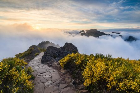 Top of the World by Justin Minns