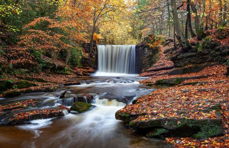Nant Mill Country Park by Andrew Crothall