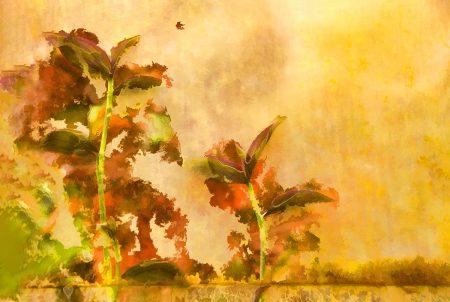 Textural Foliage by Jocelyn Horsfall
