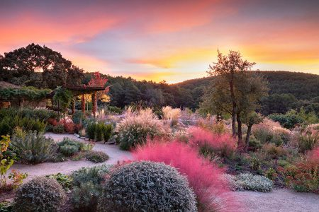Sunrise in the Tietar Valley by Richard Bloom