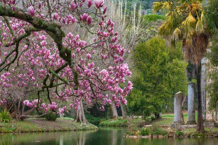 In The English Garden by Vincenzo Di Nuzzo