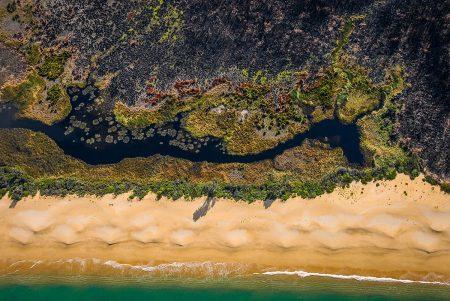 Bushfire Survival by Robin Williams