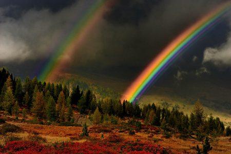 Rainbows by Albert Ceolan