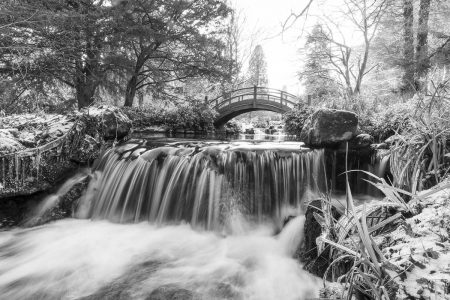 Japanese Water Gardens by Allan Wright