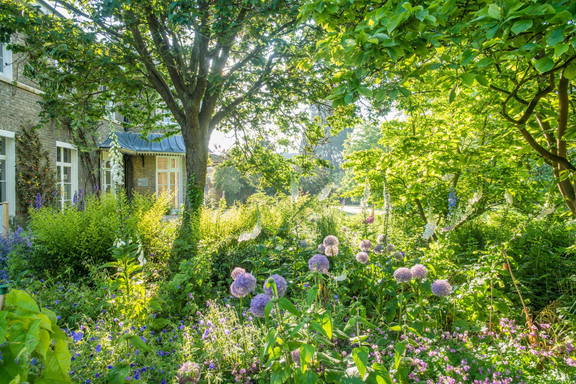 The Spirit and Beauty of Cambridge University Botanic Garden