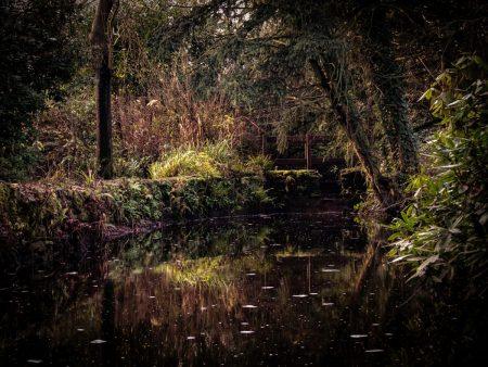 Magical Pool by Richard Kirk
