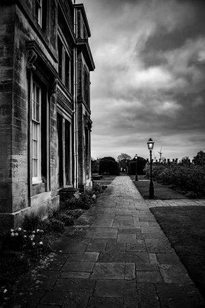Pathways by Richard Kirk