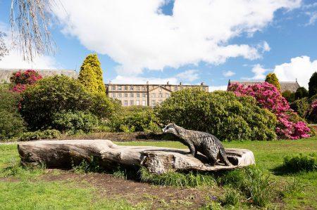 The Ushaw Badger by Ian Davison
