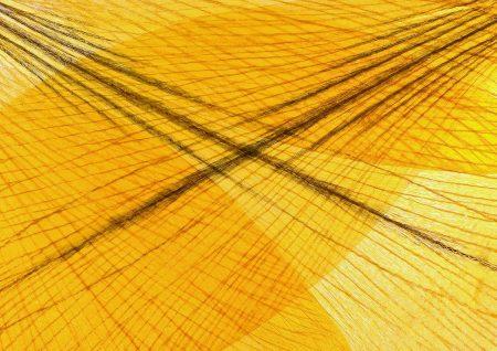 Yellow Crocus Petals by Åsa Forsberg