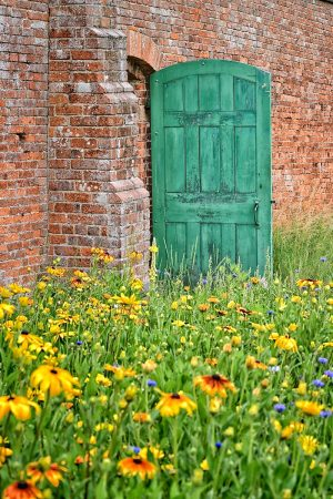 The Green Door by Anne Haile