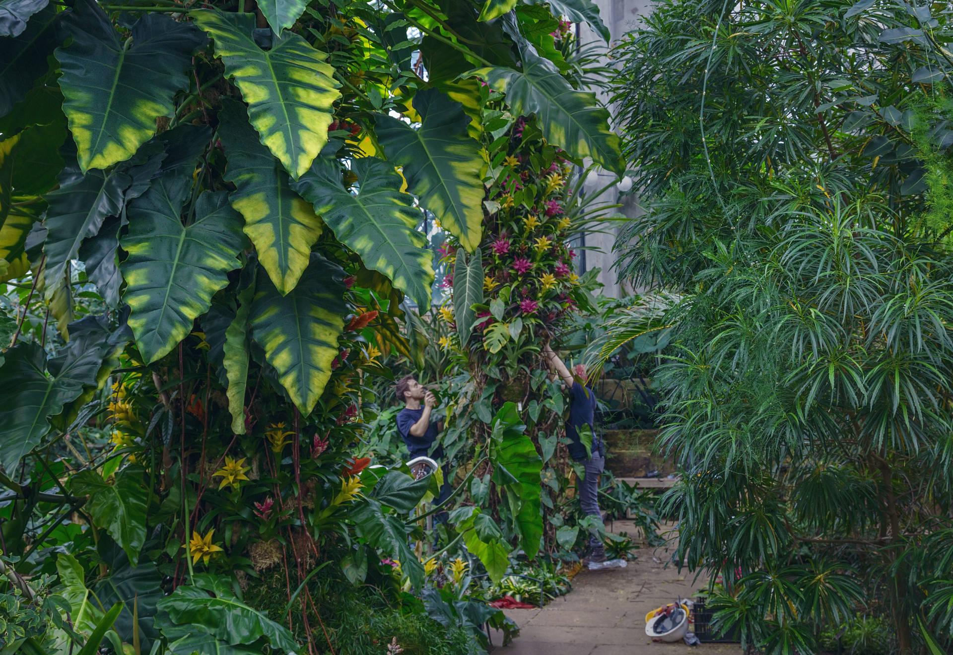 Captured at Kew