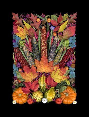 Harvest Still Life by Sandra Schulze