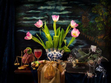 Tulip Mania by Cristina Wanjura