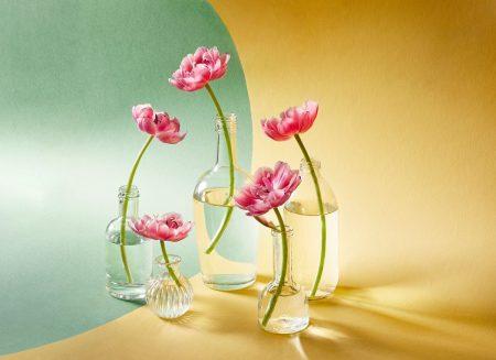 Five Tulips by Alena Kutnikova