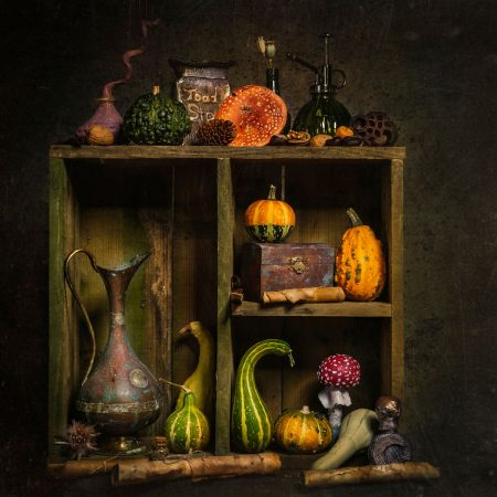 Witches Shelves by Angi Wallace